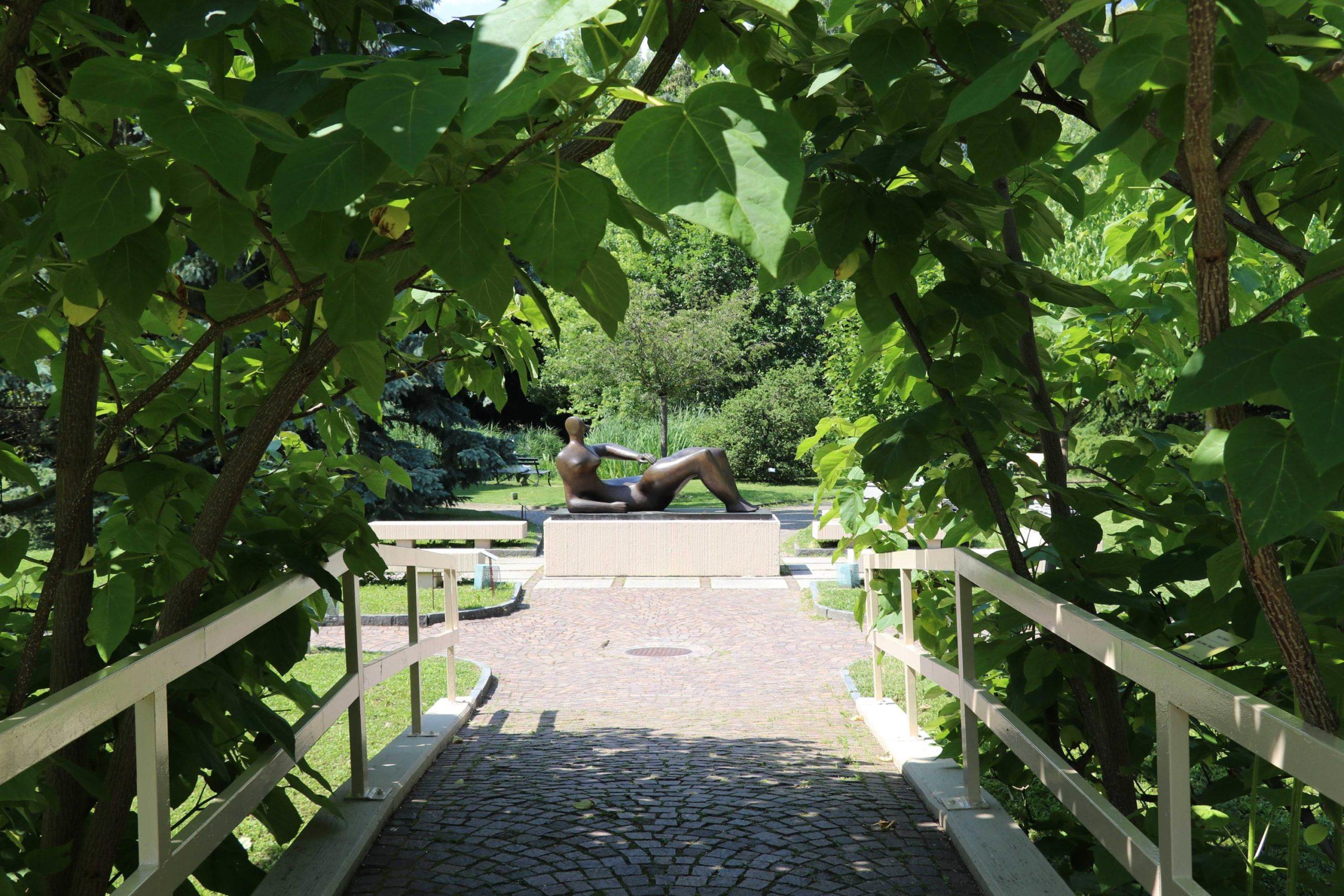 Jardins de la Fondation Pierre Gianadda