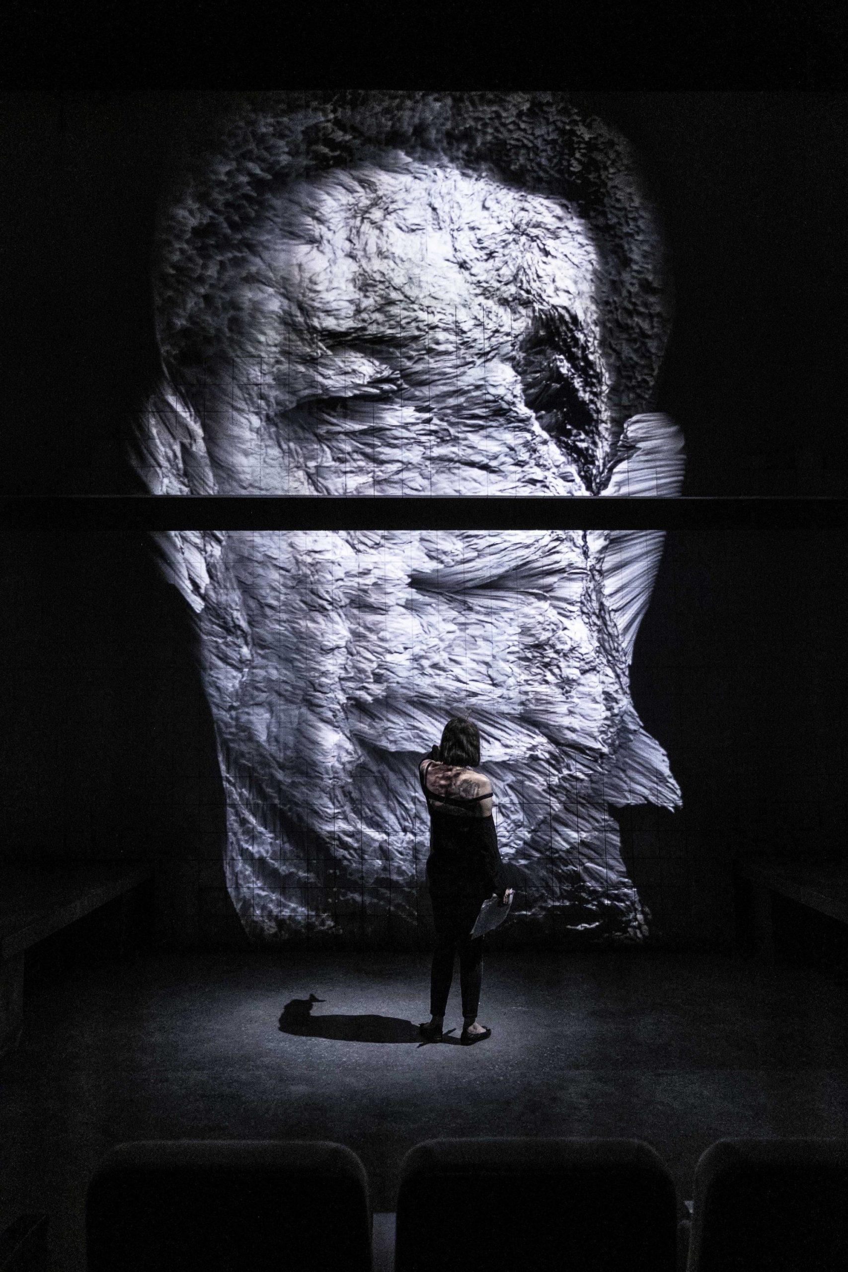 Pièce Elephant Man, 2019 © Arnaud Bertereau