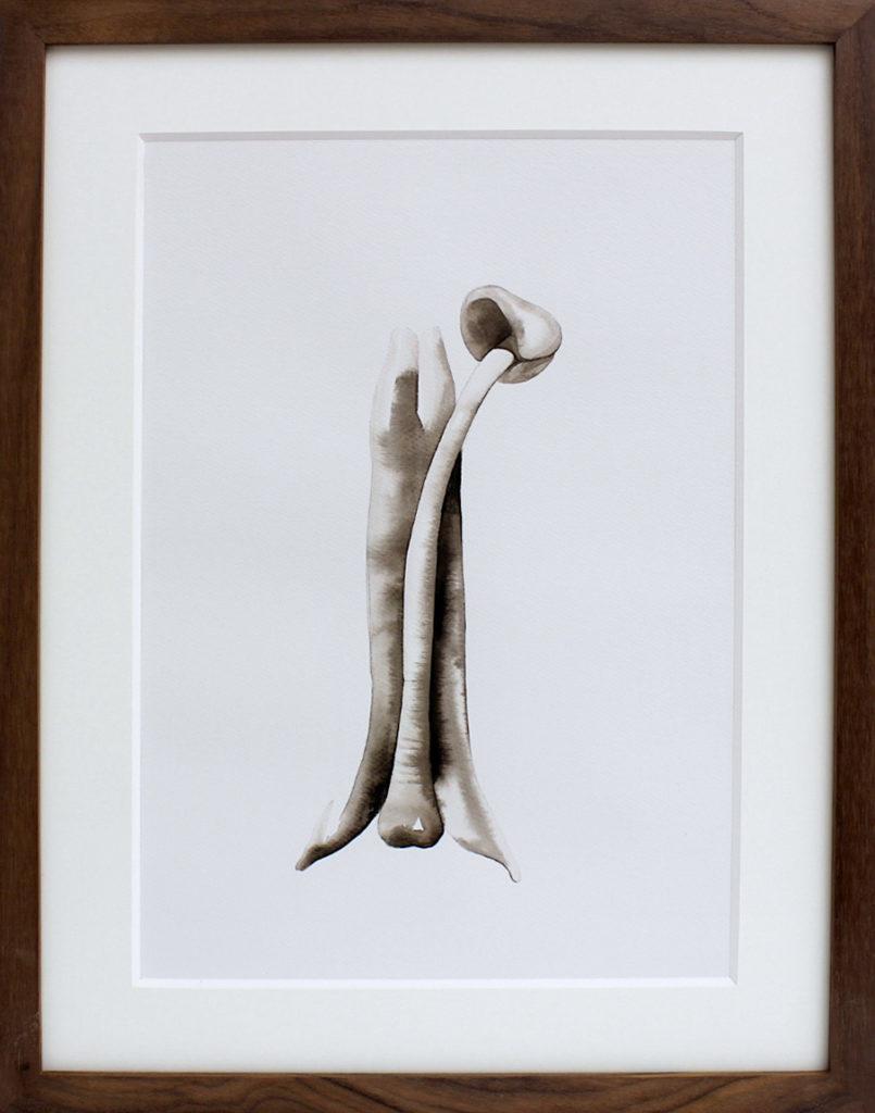 Nikita Kadan, Attis #4, 2018. Encre sur papier encadrée 38,5 x 30 cm. Courtesy Galerie Poggi, Paris