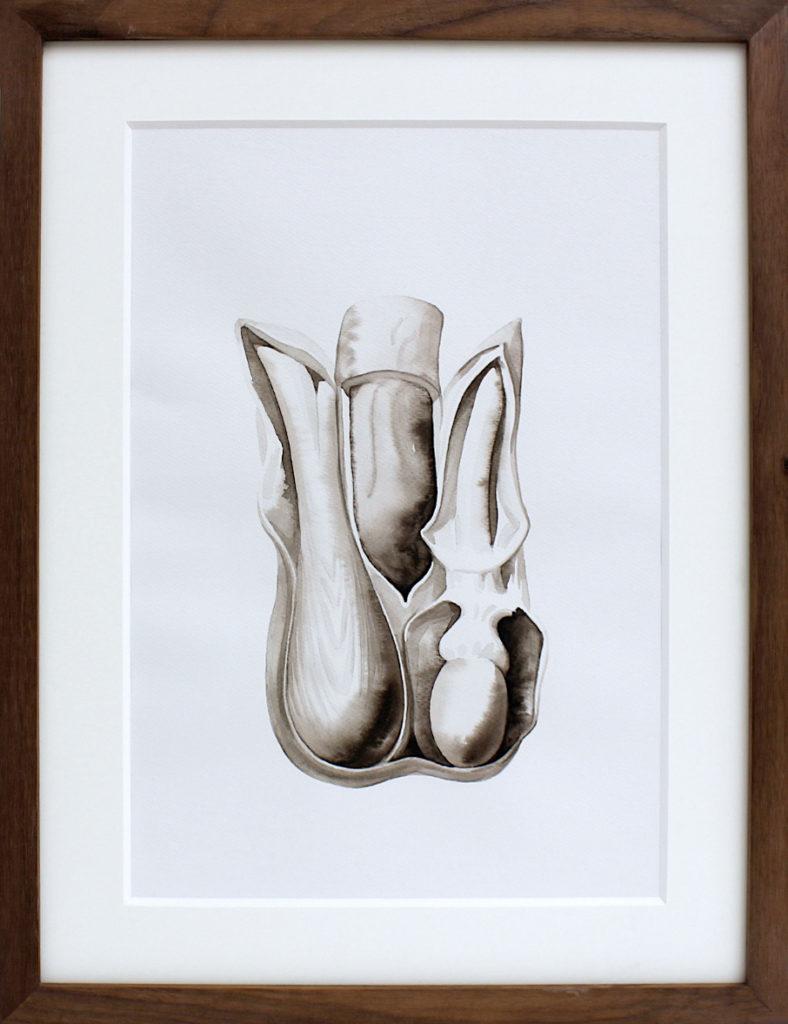 Nikita Kadan, Attis #3, 2018. Encre sur papier encadrée 38,5 x 30 cm. Courtesy Galerie Poggi, Paris