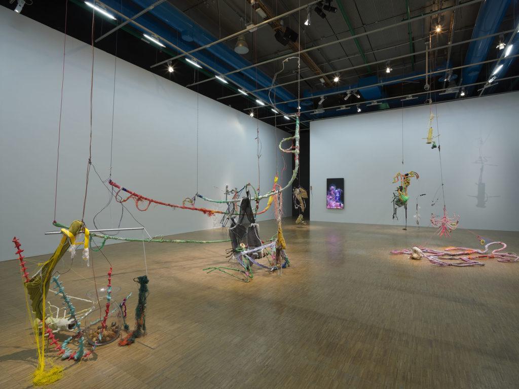 Prix Marcel Duchamp 2021, Julien Creuzet, © Centre Pompidou, 2021, Photo Bertrand Prévost